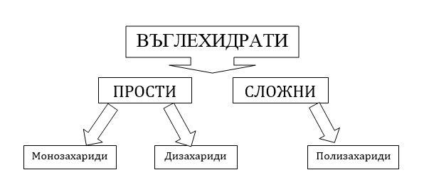 Vyglehidrati-Shema-Obshta-Vsichki